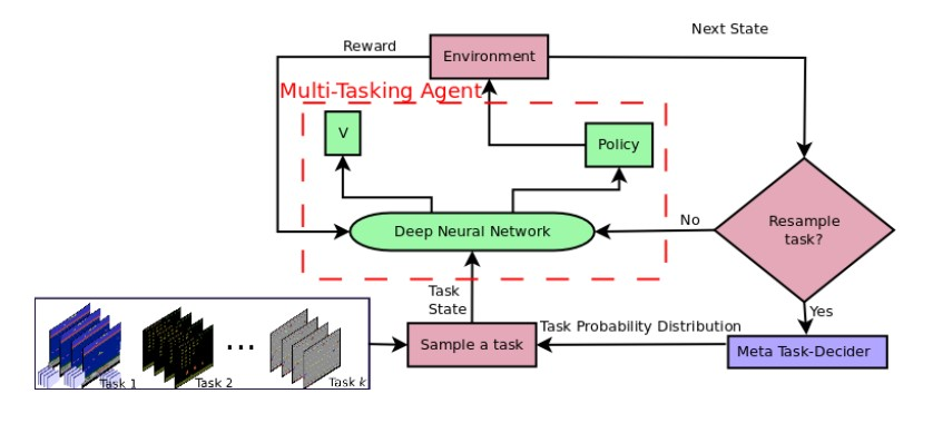 Learning to Multi-Task by Active Sampling
