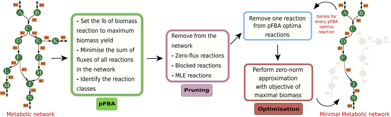 MINREACT: an efficient algorithm for identifying minimal metabolic networks